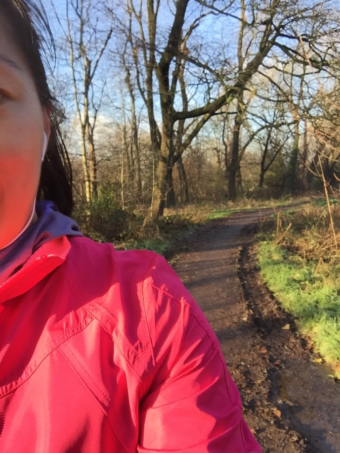 Day 14/25 #adventrunning update: I is infected